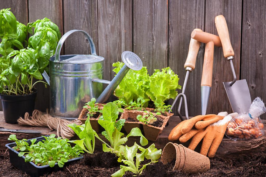 Gardening is easy!